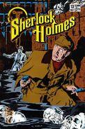 Cases of Sherlock Holmes 13