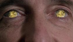 Prinzen der Hölle Augen