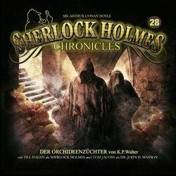 Sherlock Holmes Chronicles 28