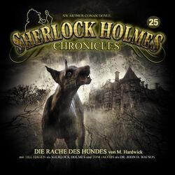 Sherlock Holmes Chronicles 25 - Zweitauflage