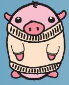 Sweater Pig