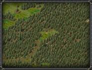 Разрушенный портал Тимбертона 3