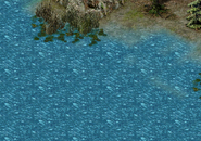 Исток Серебряного ручья