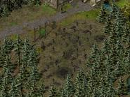Скала воронов, кладбище 4