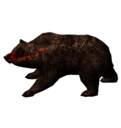 Кровавый медведь