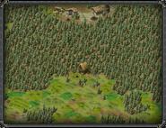 Хижина охотника (Ширс-Пен) 3