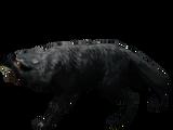 Бешеный волк