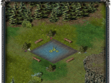 Пруд замка «Скала воронов»