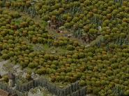 Лагерь орков 4