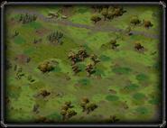 Круг деревьев Ширс-Пена 3