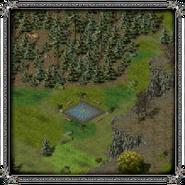 Скала воронов, пруд 6