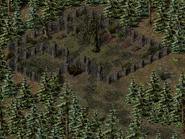 Перекрёсток Фей, кладбище 4