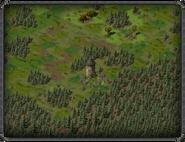 Тимбертон, руины 3