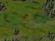 Перекрёсток Фей, поляна 5