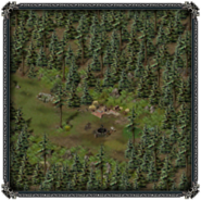 Тимбертон, лесной лагерь 1