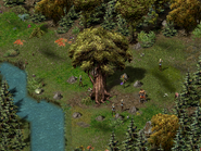 Тимбертон, Дерево Жизни 5