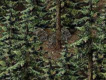 Лесной-лагерь-Тимбертона-(фрагмент-каменной-стены)