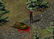 Мёртвая болотная гарпия