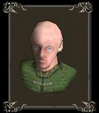 Маскарелльский защитник чести (портрет)