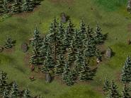 Тимбертон, руины 6