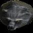 Черный медведь (иконка)