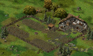 Маскарелль, ферма Харнета 4