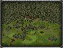 Тимбертон, орочьи лагеря 3