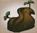 Herbalist root