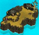 Turtle Island - Endurance