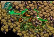 Map Spring Village 0 0 0
