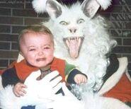 Evil bunny9
