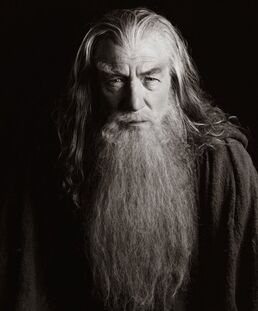 Gandalf bw