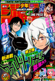 No. 11, 2013 (Chapter 38)
