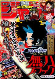No. 25, 2013 (Chapter 51)