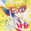 SailorV1