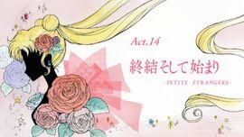 Logo act14