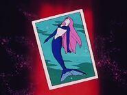 Seiren Card
