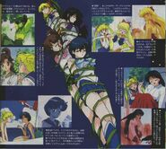 Sailor Scout Memories
