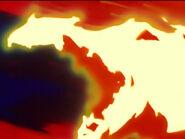 Fire soul bird3