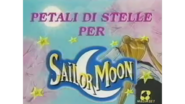 Sailor Moon Sailor Stars Italian Logo