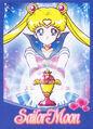 Sailor Moon Brazilian DVD Promo Card.jpg