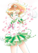 SailorJupiter Icon