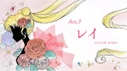 ACT 3 Card