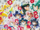 Sailor Guardians