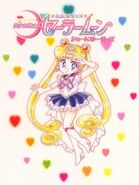 Princess Sailor Moon NT