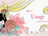 Act 1 Usagi - Sailor Moon (episode)