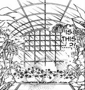 Ogród botaniczny Mugen