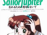 Sailor Jupiter - In Order to Forget, Don't Fall in Love
