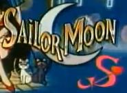 Sailor Moon S Logo Mexico