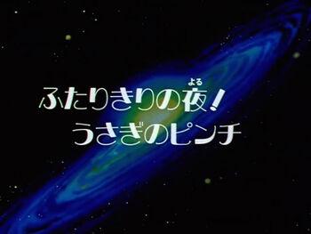 第184話(18)「ふたりきりの夜!うさぎのピンチ」.avi snapshot 03.02 -2010.02.01 14.07.55-.jpg